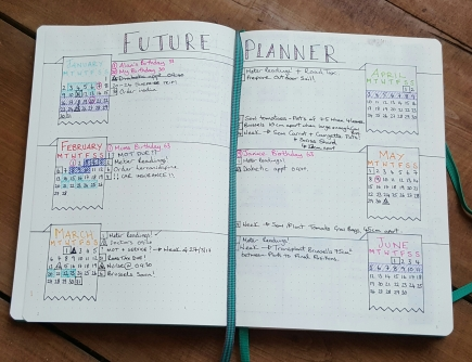 New Future Planner